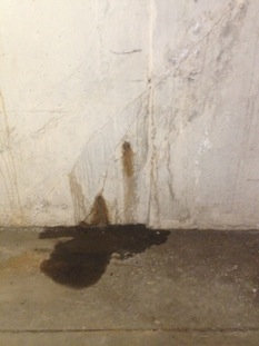 362F031B-62D9-4E81-A5B7-7912C9AD41F1structural-concrete-repair-leak-repairs